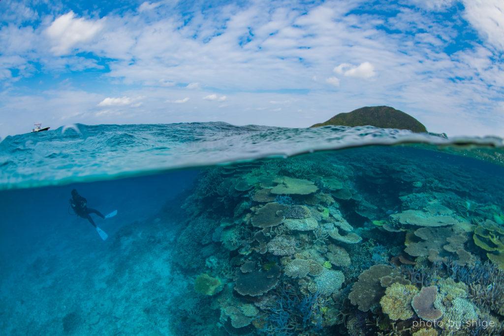 伊平屋島ダイビング