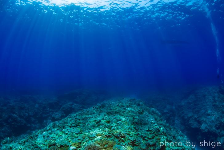 与論島の透明度